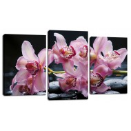 ЦветыМодульные картины из 3 частей 55x100 см - Модульная картина МТ170 (55х100)