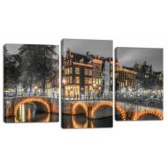 ЦветыМодульные картины из 3 частей 55x100 см - Модульная картина МТ176 (55х100)