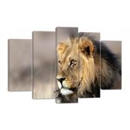 Картины на холстеКартины на холсте Животные - Модульная картина арт. 875