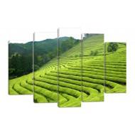 АбстракцияМодульные картины из 5 частей 82x135 см - Модульная картина арт. 923