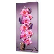 Картины на холстеКартины на холсте Цветы - Картина на холсте (канвас) KH35