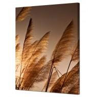 Картины на холсте (канвасы) оптом - Картина на холсте (канвас) KH944