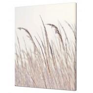 Картины на холсте (канвасы) оптом - Картина на холсте (канвас) KH945