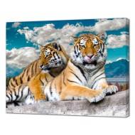 Картины на холстеКартины на холсте 40х50 - Картина на холсте (канвас) KH1088
