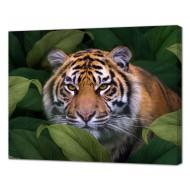 Картины на холстеКартины на холсте 40х50 - Картина на холсте (канвас) KH1090