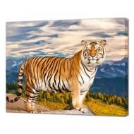Картины на холстеКартины на холсте Животные - Картина на холсте (канвас) KH1100