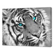Картины на холстеКартины на холсте Животные - Картина на холсте (канвас) KH1102