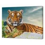 Картины на холстеКартины на холсте Животные - Картина на холсте (канвас) KH1107