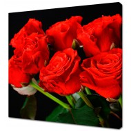 Картины на холстеКартины на холсте 40х40 - KH419