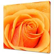 Картины на холстеКартины на холсте 40х40 - KH424
