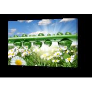 Картины на холстеКартины на холсте 50х100 - КН86