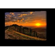 Картины на холстеКартины на холсте 50х100 - КН89