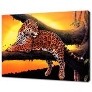 Картины на холстеКартины на холсте 50х70 - KH615