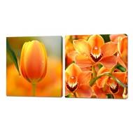Картины на холстеКартины на холсте 50x50 - Картины на холсте (канвас) KH321