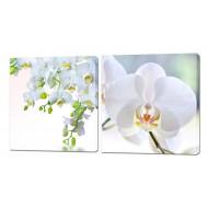 Картины на холстеКартины на холсте 50x50 - Картины на холсте (канвас) KH323