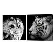 Картины на холстеКартины на холсте 50x50 - Картины на холсте (канвас) KH325