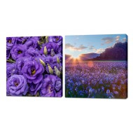 Картины на холстеКартины на холсте Канвасы 50x50 - KH347