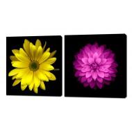 Картины на холстеКартины на холсте Канвасы 50x50 - KH348