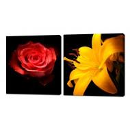 Картины на холстеКартины на холсте Канвасы 50x50 - KH351