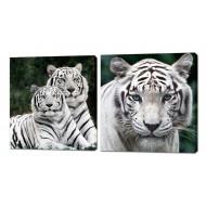 Картины на холстеКартины на холсте 50x50 - Картина на холсте (канвас) KH353