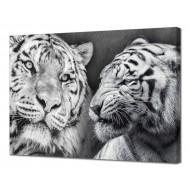 Картины на холстеКартины на холсте 50х70 - Картина на холсте (канвас) KH1059