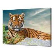 Картины на холстеКартины на холсте 50х70 - Картина на холсте (канвас) KH1061