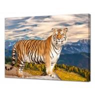 Картины на холстеКартины на холсте 50х70 - Картина на холсте (канвас) KH1067