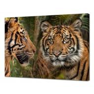 Картины на холстеКартины на холсте 50х70 - Картина на холсте (канвас) KH1069