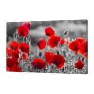 Цветы - Картина на холсте (канвас) KH37
