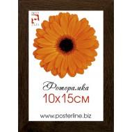 Картина-сувенир - Фоторамка R_1-0 (МДФ 2см_кор)