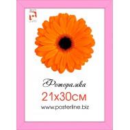 ФоторамкиФоторамки 21x30 - Фоторамка R_1-5 (pink_3см)