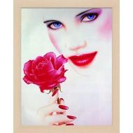 РаспродажаРаспродажа Постер в раме 28х35 - Фото постер в раме 2 см - T-136_28x35