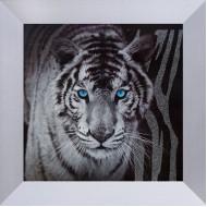 ЖивотныеКупить репродукции оптом - выгодно в «Постер-Лайн» - TZ206-1_18x18