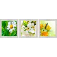 ЦветыЦветы 18x54 - Модульная картина Т71 - Размер 18х54
