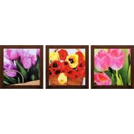 ЦветыЦветы 18x54 - Картина TC 147: 18x54