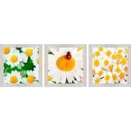ЦветыЦветы 18x54 - Модульная картина TC156 - Размер 18х54