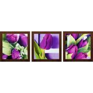 ЦветыЦветы 18x54 - TC76