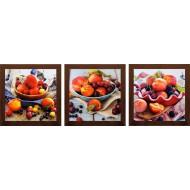 ЦветыЦветы 18x54 - Картина TD99: 18x54