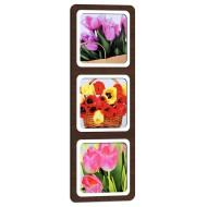 ЦветыЦветы 23x67 - TC147L