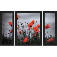 Картина-сувенир - C165_50х80