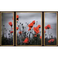 Картина-сувенир - C165 - Триптих